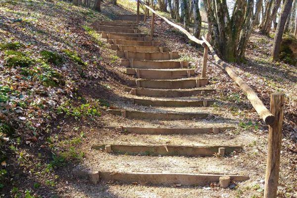 stopnice-v-gozduDEC73B54-7750-89FA-A719-B90EECC868FD.jpg